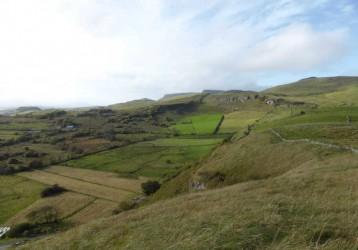 partial HNV ireland