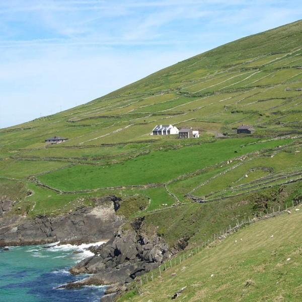partial HNV farmland in ireland