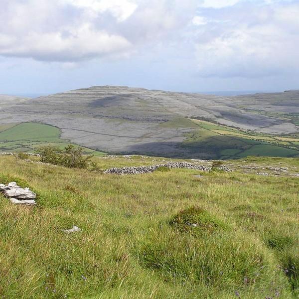 irish whole hnv farmland